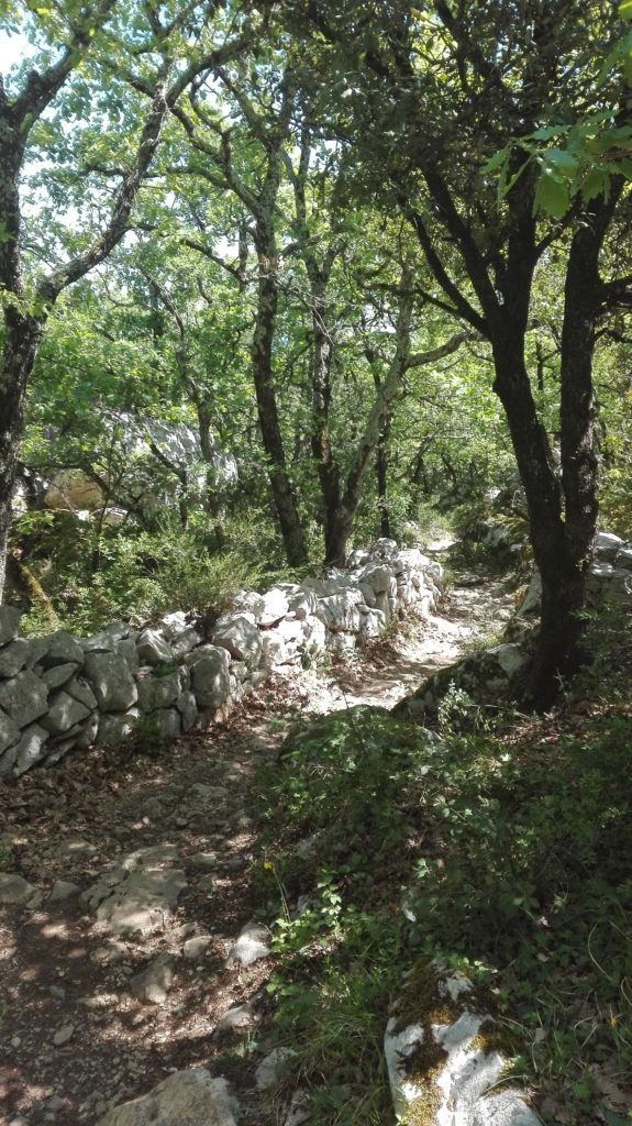 randonnée pédestre en Ardeche entre dolines et balazuc