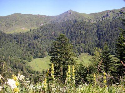 randonnée pédestre sur les volcans d'auvergne, Meije Costes