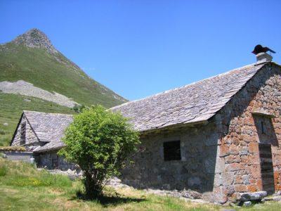 randonnée pédestre sur les volcans d'auvergne Puy griou