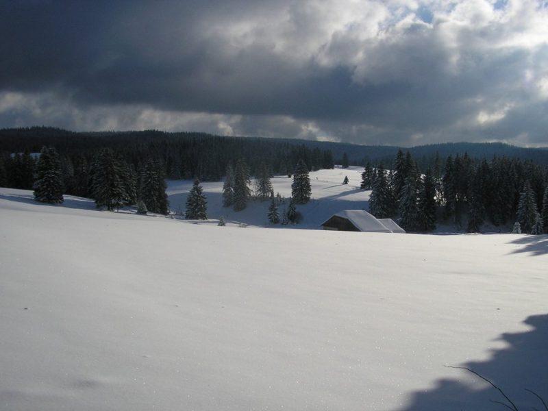 Randonnées raquette Jura chez Greset